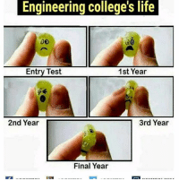 Engineering college's life  MATA  1st Year  Entry Test  2nd Year  3rd Year  Final Year Twitter: BLB247 Snapchat : BELIKEBRO.COM belikebro sarcasm meme Follow @be.like.bro