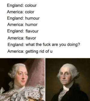 America, England, and Memes: England: colour  America: color  England: humour  America: humor  England: flavour  America: flavor  England: what the fuck are you doing?  America: getting rid of u Some stolen history memes