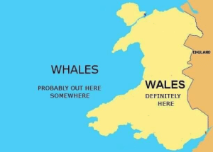Confused, Definitely, and England: ENGLAND  WHALES  WALES  PROBABLY OUT HERE  SOMEWHERE  DEFINITELY  HERE For anyone still confused