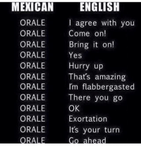 Memes, Relatable, and Amazing: ENGLISH  I agree with you  Come on!  Bring t on!  MEXICAN  ORALE  ORALE  ORALE  ORALE Yes  ORALE Hurry up  ORALE  ORALE  ORALE There you go  ORALE  ORALE  ORALE  Thats amazing  Im flabbergasted  OK  Exortation  Its your turn Relatable 😊 FOLLOW US➡️ @so.mexican