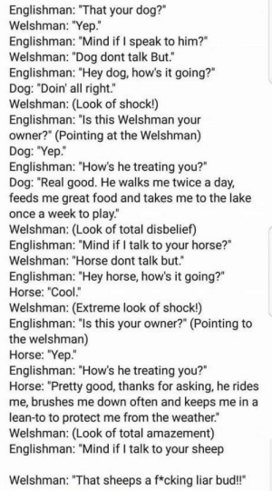 "Never trust the sheep!: Englishman: ""That your dog?""  Welshman: ""Yep.""  Englishman: ""Mind if I speak to him?""  Welshman: ""Dog dont talk But.""  Englishman: ""Hey dog, how's it going?""  Dog: ""Doin' all right.""  Welshman: (Look of shock!)  Englishman: ""ls this Welshman your  owner?"" (Pointing at the Welshman)  Dog: ""Yep.  Englishman: ""How's he treating you?""  Dog: ""Real good. He walks me twice a day,  feeds me great food and takes me to the lake  once a week to play.  Welshman: (Look of total disbelief)  Englishman: ""Mind if I talk to your horse?""  Welshman: ""Horse dont talk but.""  Englishman: ""Hey horse, how's it going?""  Horse: ""Cool.""  Welshman: (Extreme look of shock!)  Englishman: ""ls this your owner?"" (Pointing to  the welshman)  Horse: ""Yep""  Englishman: ""How's he treating you?""  Horse: ""Pretty good, thanks for asking, he rides  me, brushes me down often and keeps me in a  lean-to to protect me from the weather.  Welshman: (Look of total amazement)  Englishman: ""Mind if I talk to your sheep  Welshman: ""That sheeps a f*cking liar bud!"" Never trust the sheep!"