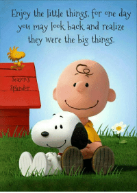 The Littl: Enjoy the little things, for one day  you may look back and realize  they were the big things  Season  Splendor