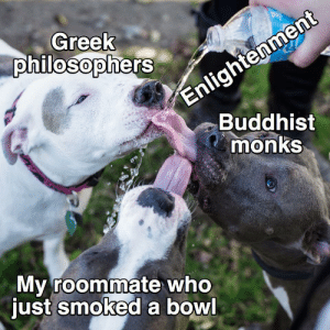 Enlightenment: Enlightenment  Buddhist  monks  Greek  philosophers  My roommate who  just smoked a bowl Enlightenment
