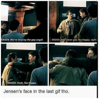 gay gifs: ENSEN: We're missing the gay angel.  MISHA: You mean gay like happy, righti  JENSEN: Yeah, like happy  Jensen's face in the last gif tho.