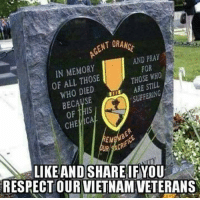 Salute! #NIDPatriots: ENT ORAM  IN MEMORY  OF ALL THOSE  WHO DIED  AND PRAY  FOR  THOSE WHO  ARE STILL  SUFFERING  CHE ICAL  EM  ACR  LIKEAND SHARE IF YOU  RESPECT OUR VIETNAM VETERANS Salute! #NIDPatriots