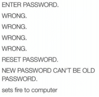 Fire, Memes, and Computer: ENTER PASSWORD.  WRONG  WRONG.  WRONG.  WRONG.  RESET PASSWORD.  NEW PASSWORD CAN'T BE OLD  PASSWORD.  sets fire to computer