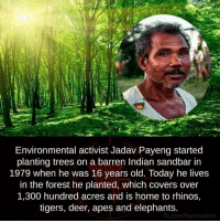 Elephant: Environmental activist Jadav Payeng started  planting trees on a barren Indian sandbar in  1979 when he was 16 years old. Today he lives  in the forest he planted, which covers over  1,300 hundred acres and is home to rhinos,  tigers, deer, apes and elephants  fb.com/factsweird