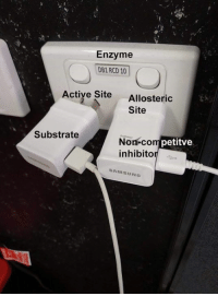 Memes, Samsung, and 🤖: Enzyme  DB1 RCD 10  Actiye SiteAllosteric  Site  Substrate  Non-co  inhibito  m petitve  SAMSUNG Credit: Zooxanthellate Memes for Anthozoan Teens