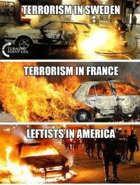 Memes, Wow, and France: EORISMSWEDEN  IN  TURNI  POINT USA  TERRORISM IN FRANCE  LEFTISTS'IN AMERIC Wow... #BigGovSucks