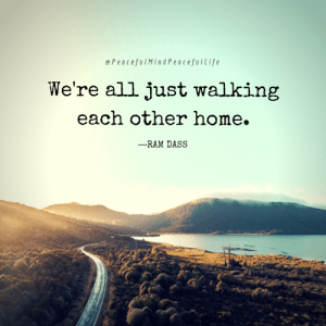 Memes, Home, and 🤖: ePeacefulMindPeacefulLife  We're all just walking  each other home.  -RAM DASS