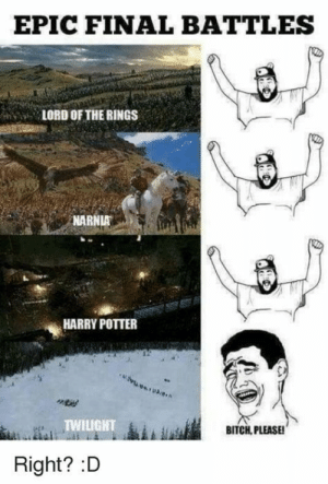 36 Harry Potter Vs. Lord of The Rings Memes That Might Start A War: EPIC FINAL BATTLES  LORD OF THE RINGS  NARNIA  HARRY POTTER  TWILIGHT  BITCH, PLEASE!  Right? :D 36 Harry Potter Vs. Lord of The Rings Memes That Might Start A War