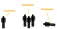 awesomage:  How to prepare for a pandemic: Epidemic  Pandemic  Endemic awesomage:  How to prepare for a pandemic