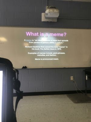"""My English teacher thought memes were """"deep"""": EPSON  What is a meme?  A meme is """"an idea  from person to person within a culture.""""  vior or style that spreads  ced  Richard Dawkins first coined the term """"meme"""" in  his book The Selfish Gene in 1976.  71an  Examples of memes include catch-phrases,  melodies, and fashion.  Meme is pronounced meem. My English teacher thought memes were """"deep"""""""