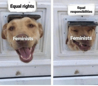 Memes, 🤖, and Oops: Equal rights  Equal  responsibilities  Feminists  Feminists (WS) Oops!