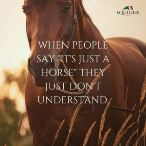 "Horse, Quote, and They: EQUILINE  iTAIA  WHEN PEOPLE  SAY AT'S JUST A  HORSE"" THEY  JUST DONT  UNDERSTAND Inspirational Horse Quote"