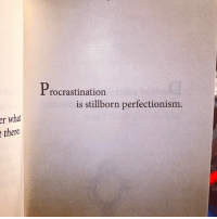 Funny, Book, and Link: er what  Procrastination  is stillborn perfectionism.  there. This is one of my personal favorites from the book, because you actually have to think about what it means. Link in bio for the book if you're interested in finding your own favorite. I'm also interested in knowing what your favorite pages are. Post a picture and tag me in the photo so I can see it, and I'll try and tell you the story behind how I came to that particular realization. Thanks to everybody who bought the book so far. I hope you're all getting something out of it 💪🏼