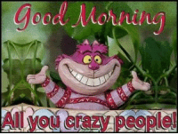 Crazy, Dank, and Friends: erazy people Good morning my crazy friends <3