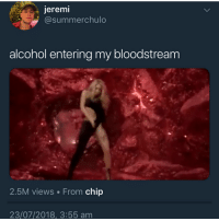 Memes, Alcohol, and Chip: erem  @summerchulo  alcohol entering my bloodstream  2.5M views From chip  23/07/2018, 3:55 am 💀💀💀