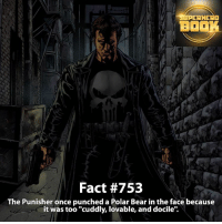 """Memes, SpiderMan, and Superhero: ERHERO  BOOK  Fact #753  The Punisher once punched a Polar Bear in the face because  it was too """"cuddly, lovable, and docile'. The Punisher why!?? - marvel superhero facts marvelfacts supervillain rocketracoon spiderman marveluniverse anime marvelstudios xmen jeremyrenner avengers comics mcu marvelart marvelcomics teamcap civilwar teamironman ironman avengers guardiansofthegalaxy robertdowneyjr captainamerica deadpool punisher captainamericacivilwar ==================================="""