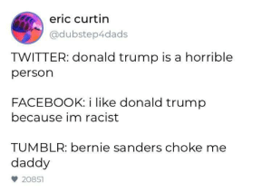 And Reddit?: eric curtin  @dubstep4dads  TWITTER: donald trump is a horrible  person  FACEBOOK: i like donald trump  because im racist  TUMBLR: bernie sanders choke me  daddy  20851 And Reddit?