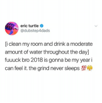 Anaconda, Memes, and Turtle: eric turtle  @dubstep4dads  i clean my room and drink a moderate  amount of water throughout the day]  fuuuck bro 2018 is gonna be my year i  can feel it, the grind never sleeps  100 Me