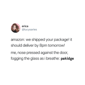 Every time 😂: erica  @lucysaries  amazon: we shipped your package! it  should deliver by 8pm tomorrow  me, nose pressed against the door,  fogging the glass as i breathe: pakidge Every time 😂