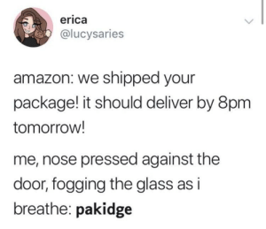 Pakidge: erica  @lucysaries  amazon: we shipped your  package! it should deliver by 8pm  tomorrow!  me, nose pressed against the  door, fogging the glass as i  breathe: pakidge Pakidge