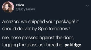 Shipped: erica  @lucysaries  amazon: we shipped your package! it  should deliver by 8pm tomorrow!  me, nose pressed against the door,  fogging the glass as i breathe: pakidge
