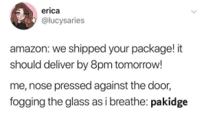 WHERE IS IT: erica  @lucysaries  amazon: we shipped your package! it  should deliver by 8pm tomorrow!  me, nose pressed against the door,  fogging the glass as i breathe: pakidge WHERE IS IT