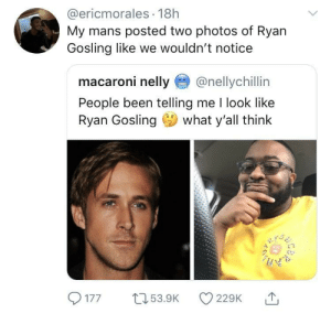 Nelly, Ryan Gosling, and Single: @ericmorales 18h  My mans posted two photos of Ryan  Gosling like we wouldn't notice  macaroni nelly@nellychillin  People been telling me I look like  Ryan Gosling what y'all think  1  77 5.9 22 Can't spot a single difference
