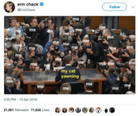 Love, Pets, and Never: erin chack  Follow  @ErinChack  me  me  rme  me  me  me me  me  e m  me  Toe me  ie  me  my cat  yawning  me  me  me  me  me  4:20 PM-10 Apr 2018  21,961 Retweets 71,638 Likes <p>Never enough love for your pets. :)</p>