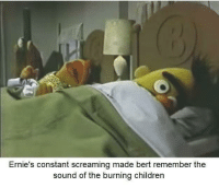 Children, Memes, and Sound: Ernie's constant screaming made bert remember the  sound of the burning children Not again via /r/memes https://ift.tt/2LbiavM