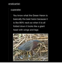 SNEK BIRD also when should i do a live stream idk if i should ~adeezha (@adeezhaa @kms.kiwi) - tags: tumblrtextpost tumblrposts textpost tumblr shrek instatumblr memes posts phan funnythings 😂 same funny haha loltumblr lol relatable rarepepe funnythings funnytextposts pepeislife meme funnystuff pepe food spam: erraticartist  cupsnake  You know what the Green Heron is  basically the best heron because it  is like 90% neck so when it is all  folded down it looks like a giant  head with wings and legs SNEK BIRD also when should i do a live stream idk if i should ~adeezha (@adeezhaa @kms.kiwi) - tags: tumblrtextpost tumblrposts textpost tumblr shrek instatumblr memes posts phan funnythings 😂 same funny haha loltumblr lol relatable rarepepe funnythings funnytextposts pepeislife meme funnystuff pepe food spam
