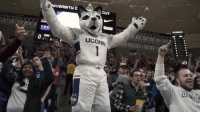 The UCONN student section did the MannequinChallenge 👏🎧 @uconnhuskies WSHH: ERSITH  CUT  UCONN  -23 The UCONN student section did the MannequinChallenge 👏🎧 @uconnhuskies WSHH