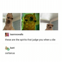 Ironic, Kant, and Cerberus: ES teamnowalls  these are the spirits that judge you when u die  kant  cerberus Should we change our profile pic to one of these pictures in the future