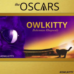 Memes, Oscars, and Best: eSCARS  the  OWLKITTY  Bohemian Rhapsody  Who should win the Best Actor? 🐱 By @owl__kitty⠀ oscars2019 oscars academyawards