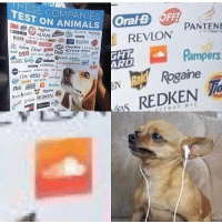 4chan, Animals, and Avon: ESE COMPANIES OralB  TEST ON ANIMALS  PANTENE  BOSS EAHA  ACUVUE Asno  AXE AVON  REVLON  taze ©田㎏eam @  ANS  Crest DIESEL  usroar LOREAL golv.wen.gol  rampers  ARD  REVION PA  ogane  DKEN  hes REDKEN ____________________________________________ Follow my personal account @noahdovb (Photography, music, and shit) ___________________________________________ eataburger filthyfrank edgymemes triggered offensivecontent papafranku dankmemes edgy4days kidzbop ayylmao offensive cringe 4chan edgybullshit fantasticfuckers injectedmemes memecucks edgy filthyfrank