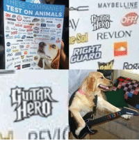 Animals, Avon, and Dove: ESE COMPANIES  TEST ON ANIMALS  3M 409  ACUVUE Aveeno  CK AXE AVON  PURINA  BOSS  Boss  Dosing Dove  Crest DIESEL  REVLON  VORY  Dial Gilletfe  REVLO PANTNE  Ru  .çar & Nes REDKEN @  GUARD  J0000 Rock on doggo