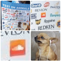 """<p>These companies test on animals. via /r/memes <a href=""""http://ift.tt/2tVNHv8"""">http://ift.tt/2tVNHv8</a></p>: ESECOMPANIESİ Oral  EST ON ANIMALSs  PANTEN  VION  PURINA  Augfresh  AIR ACUVUE Aveeno  BOSS BANDAI im fae @佃Bo00erions @  ARMORALL  WICK AXE A V  Pampers  Rogaine  Colgate  ChapStick COVERGIRI  Crest DIESEL ade  Elizabeth Arden  AMS  ana) ARMANViana DAS  RD  LAUDER  NIeR green, … IVORY  head  LISTERINE L'OREAL ohonafohwon  MAYBELLINE Old Spice  NIVEA  OlAy  Oral B OFF!  Pine-Sol REVION PANTENE <p>These companies test on animals. via /r/memes <a href=""""http://ift.tt/2tVNHv8"""">http://ift.tt/2tVNHv8</a></p>"""