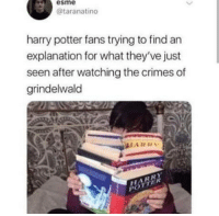 Confused, Harry Potter, and Canon: esme  @taranatino  harry potter fans trying to find an  explanation for what they've just  seen after watching the crimes of  grindelwald  HARD Crimes of grindelwald really threw out everything that was canon. i am so confused