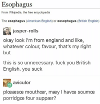 sæm - Max textpost textposts: Esophagus  From Wikipedia, the free encyclopedia  The esophagus  (American English) or  oesophagus (British English)  jasper-rolls  okay look i'm from england and like,  whatever colour, favour, that's my right  but  this is so unnecessary. fuck you British  English. you suck  aviculor  ploeaesoe mouthoer, maey l havce soumoe  porridgoe four suppaer? sæm - Max textpost textposts