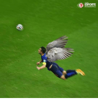 ON THIS DAY IN 2014: Robin van Persie scored this wonderful world cup goal. One of the best ever. https://t.co/KqlMaJOEsY: ESPORTE  INTERATIVO ON THIS DAY IN 2014: Robin van Persie scored this wonderful world cup goal. One of the best ever. https://t.co/KqlMaJOEsY
