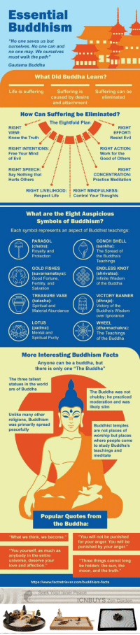 "<p><a href=""https://zengardenamaozn.tumblr.com/post/175492171045/amazing-buddhism-infographic-packed-with"" class=""tumblr_blog"">zengardenamaozn</a>:</p><blockquote><h2><b>Amazing Buddhism infographic packed with mind-blowing facts, little-known history, surprising statistics</b></h2></blockquote>  <p>I've wondered why so many Buddha statues are fat 🤔 Like is there a specific reason for that?</p>: Essential  Buddhism  ""No one saves us but  ourselves. No one can and  no one may. We ourselves  must walk the path'""  Gautama Buddha  What Did Buddha Learn?  Life is sufferingSuffering is  Suffering can be  eliminated  caused by desire  and attachment  How Can Suffering be Eliminated?  ..The Eightfold Plan  RIGHT  VIEW:  Know the Truth  RIGHT  EFFORT:  Resist Evil  RIGHT INTENTIONs:  Free Your Mind  of Evil  RIGHT ACTION:  Good of Others  Work for the  :  :  \  RIGHT SPEECH:  Say Nothing that  Hurts Others  RIGHT  CONCENTRATION:  Practice Meditation  RIGHT LIVELIHOOD:  Respect Life  RIGHT MINDFULNESS  Control Your Thoughts   What are the Eight Auspicious  Symbols of Buddhism?  Each symbol represents an aspect of Buddhist teachings:  CONCH SHELL  (sankha)  The Spread of  the Buddha's  Teachings  ENDLESS KNOT  (shrivatsa):  Infinite Wisdom  of the Buddha  PARASOL  (chatra):  Royalty and  Protection  GOLD FISHES  (suvarnamatsya)  Good Fortune,  Fertility, and  Salvation  TREASURE VASE  (kalasha)  Spiritual and  Material Abundance  VICTORY BANNER  (dhvaja)  Victory of the  Buddha's Wisdom  over Ignorance  WHEEL  (dharmachakra):  LOTUS  (padma)  Mental and  Spiritual Purity  The Teachings  dr〒ソof the Buddha  More Interesting Buddhism Facts  Anyone can be a buddha, but  there is only one ""The Buddha""  The three tallest  statues in the world  are of Buddha  The Buddha was not  chubby; he practiced  moderation and was  likely slim  Unlike many other  religions, Buddhism  was primarily spread  peacefully  Buddhist temples  are not places of  worship but places  where people come  to study Buddha's  teachings and  meditate  Popular Quotes from  the Buddha:  You will not be punished  for your anger. You will be  punished by your anger.""  What we think, we become.""  ""You yourself, as much as  anybody in the entire  universe, deserve your  love and affection.""  Three things cannot long  be hidden: the sun, the  moon, and the truth.""  https://www.factretriever.com/buddhism-facts   Seek Your Inner Peace  CNBUYS Zen Garden <p><a href=""https://zengardenamaozn.tumblr.com/post/175492171045/amazing-buddhism-infographic-packed-with"" class=""tumblr_blog"">zengardenamaozn</a>:</p><blockquote><h2><b>Amazing Buddhism infographic packed with mind-blowing facts, little-known history, surprising statistics</b></h2></blockquote>  <p>I've wondered why so many Buddha statues are fat 🤔 Like is there a specific reason for that?</p>"