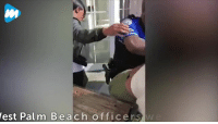 Community, Memes, and Police: est Pal m Beach officersw In a shocking incident, a police officer used force when he grabbed a women by her hair and threw her to ground outside a Florida restaurant. FOR FULL STORY VISIT: https://bit.ly/2GhgWQw #digginginthefiles Join our new group for the latest updates: Police Accountability & Filming Cop Community
