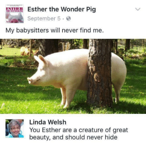 Never, Wonder, and Creature: Esther the Wonder Pig  September 5.o  My babysitters will never find me.  Linda Welsh  You Esther are a creature of great  beauty, and should never hide Esther should never hide