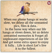 Memes, 🤖, and Data: etals  When our phone hangs or works  slow, we delete all the unwanted  pics, files & data..  In the same way when our life  hangs or slows down, let us delete  unwanted memories & Forget all  unpleasant experiences of our life  And get some extra space to enjoy  it fully... Life is short Let's live  it to the fullest. Share if you like :)