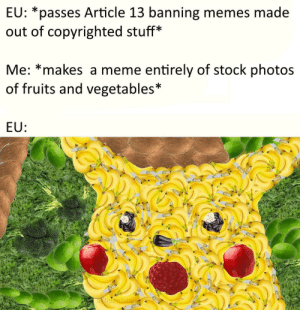 Stock Photos: EU: *passes Article 13 banning memes made  out of copyrighted stuff*  Me: *makes a meme entirely of stock photos  of fruits and vegetables*  EU: