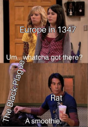 Children, Tumblr, and Black: Europe in 1347  Um. whatcha got there?  Rat  A smoothie readysetyeet:  fakehistory:  Rat bites 2 children, initiating the black plague (1347 Colorized).  IT WAS THE FLEAS. THE FLEAS.