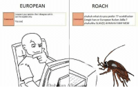 Slav: EUROPEAN  l respect your opinion, But disagree with it.  Let me explain why.  Comment  You see  Door  ROACH  ahahah what do you prefer worldfucker  Comment Cengiz han or European fucker Atilla?  ahahahha SLAV(E) AHHAHA FANY MEM  an Alk.