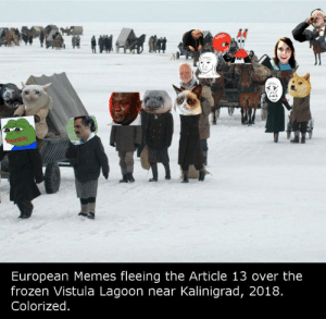 Frozen, Memes, and Article: European Memes fleeing the Article 13 over the  frozen Vistula Lagoon near Kalinigrad, 2018  Colorized